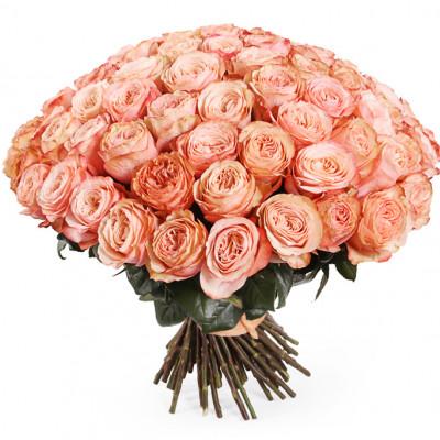 """пионовидная роза """"КАХАЛА"""""""