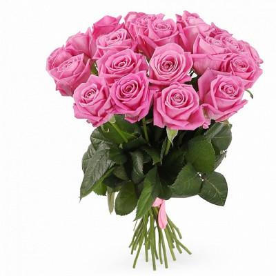 21 розовая роза сорта Аква 40 см