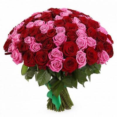 Букет из 101 красной и розовой розы 60 см