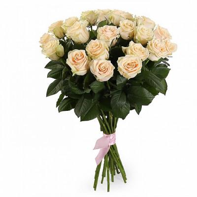 21 Роза Талея 40 см