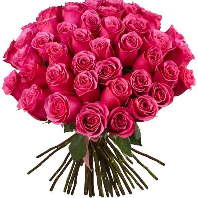 Букет из 45 роз цвета розовой фуксии 40 см