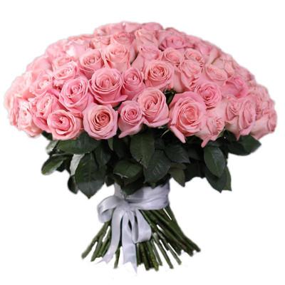 101 нежно-розовая роза 50 см