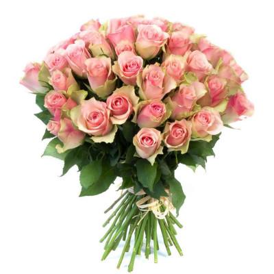 Розы - Кения 51 шт
