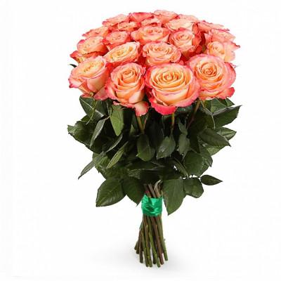 21  роза сорта Дуэт 80 см