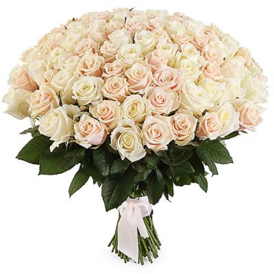 101 кремовая роза россия 90 см