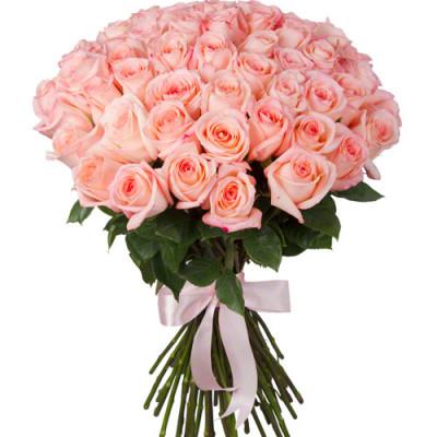 Букет из 51 розовой розы 50 см