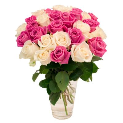 31 белая и розовая роза 60 см