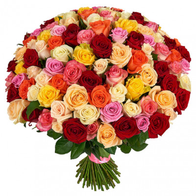 101 роза микс россия 50 см