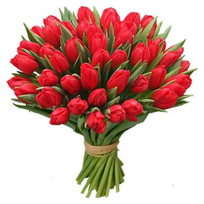 Тюльпаны Микс 45 шт