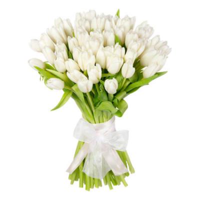 Тюльпаны Белые 41 шт