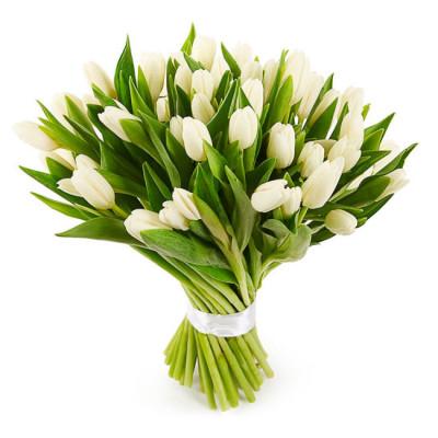 Тюльпаны Белые 21 шт