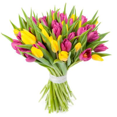 Тюльпаны Микс 35 шт