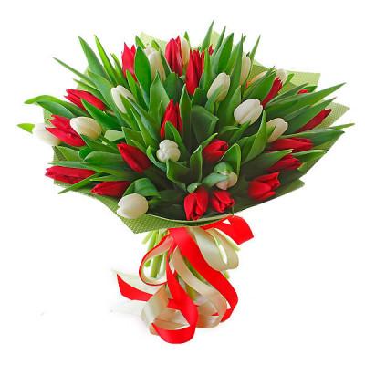 Тюльпаны Микс  с упаковкой 31 шт