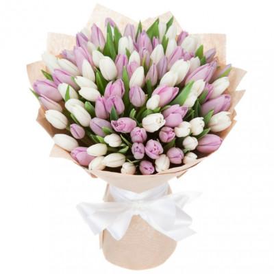 Тюльпаны Нежные 75 шт