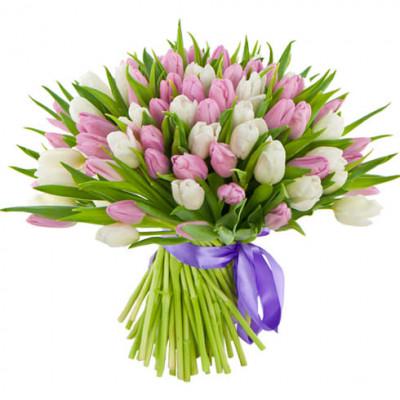 Тюльпаны Белые и Розовые 61 шт