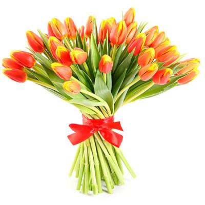 Тюльпаны Красно-Желтые 15 шт
