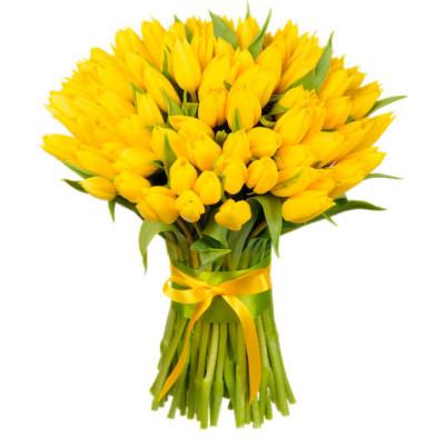 Тюльпаны Желтые 65 шт