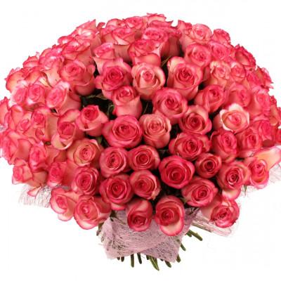 Букет из 151 розы 60 см